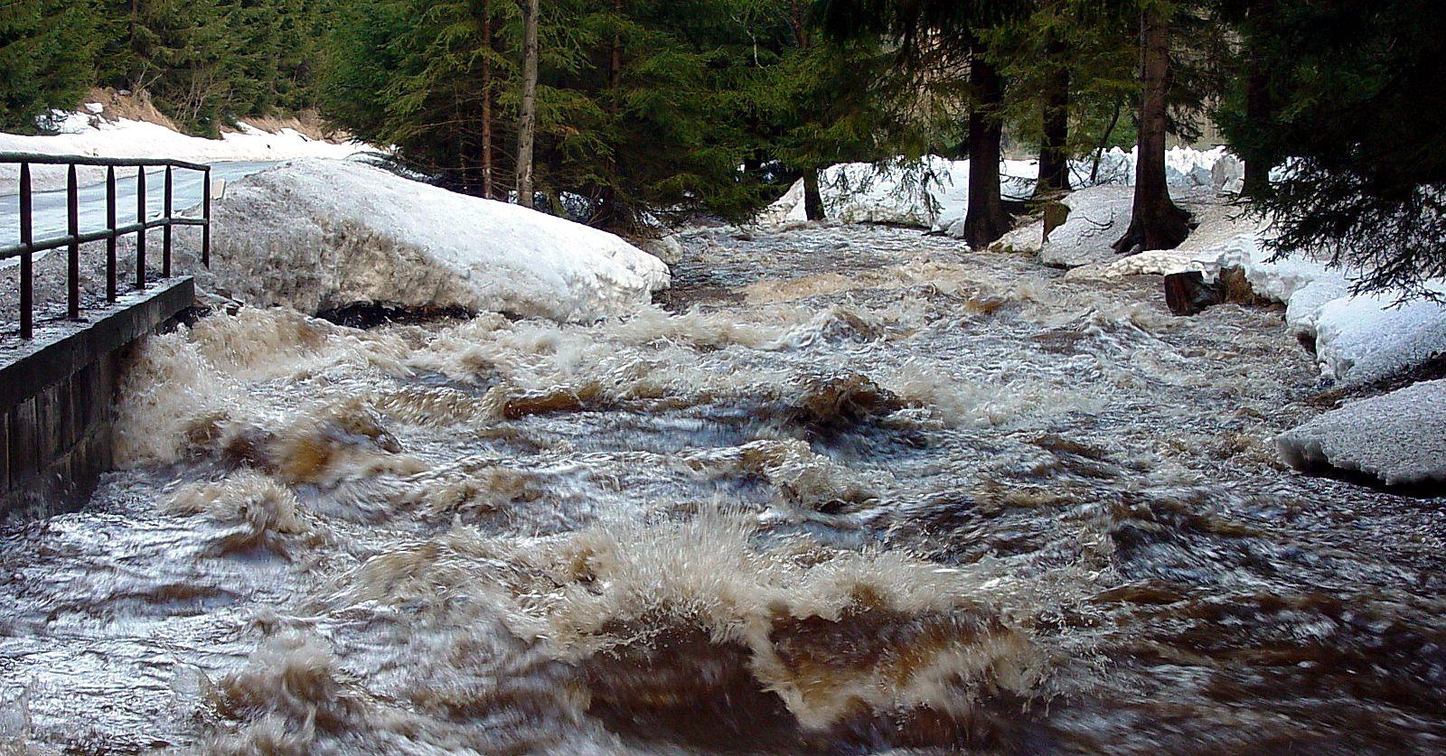 Hochwasser Natzschung